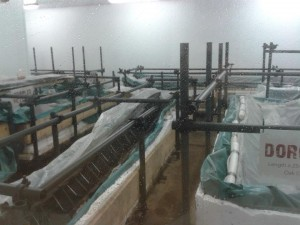 Conservation of the Must Farm boats